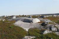 pollys cove trail, nova scotia 5