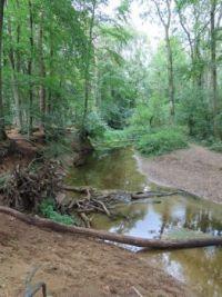 De Slinge Bekendelle bij Winterswijk: lage waterstand!