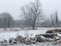 winter field in France