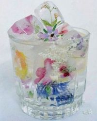 wildflower icecube drink
