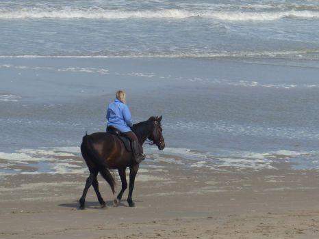 Enjoying a horse ride on the beach