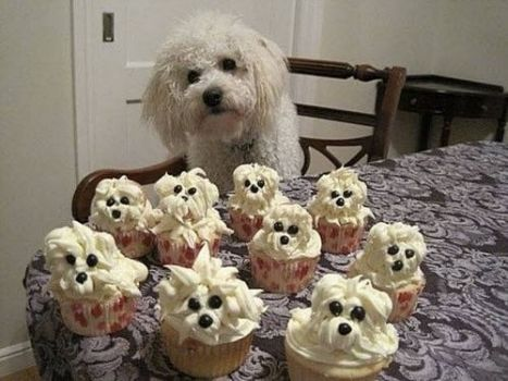 Cupcake Doggies