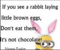 Chocolate???