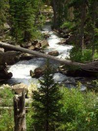 Near Jenny Lake- Grand Tetons 2006