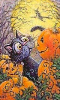 Scared Halloween Cat