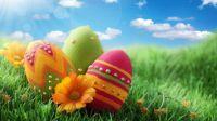 Beautiful Egg Hunt