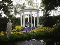Phipps Conservatory 032510
