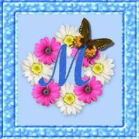 M (smaller)