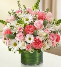 Happiness is.......A Bouquet of Roses,Daisies &Carnations.