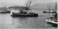 Fishing Boats Vandouver BC Coal Harbour