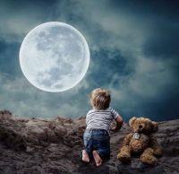 Boy and his Teddy Look At the Moon
