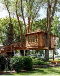 Shady Tree House