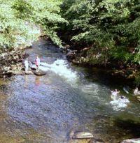 Ketchikan has large salmon stream running through downtown - kids play in the stream around the salmon, 2009