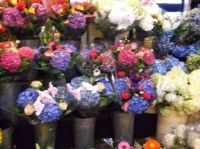 Flowers in public market
