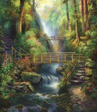 Bridge & the Forest