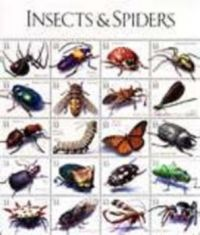 theme poster of insects and spiders kinda fuzzy