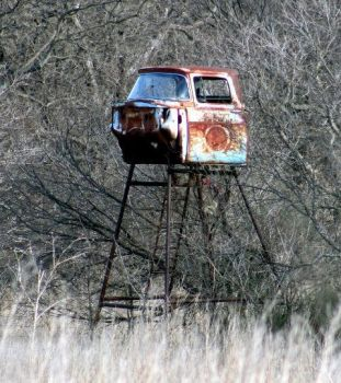 Deer Blind in Texas