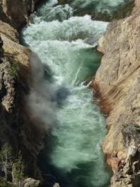 River--Yellowstone National Park