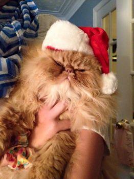 Marvin as Santa