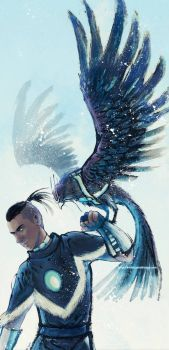 the hawk and Sokka