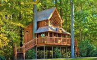 Treehouse....