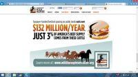 equine vs cattle