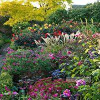 garden ok