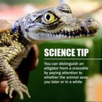 Science tip....