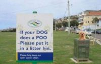 Pickup after your dog