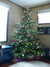 Our Tree for this year