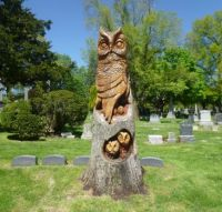 Woodlawn Cemetery Owl