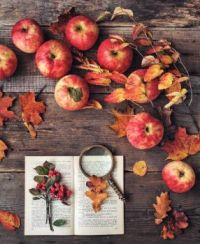 Apples, Autumn Leaves and a Book