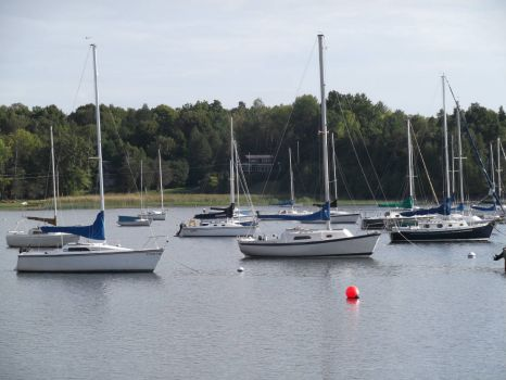 Sailboats in Vermont