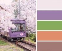 Rural Japanese Train