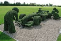 INDY CAR topiary