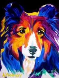 Bright Sheltie
