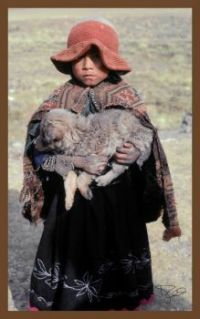 peruvian child with dog