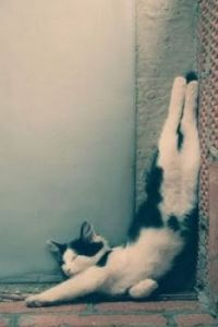 comfortable?