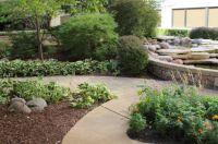 Hospital gardens2