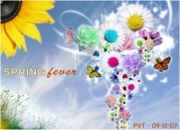 THEME - spring fever
