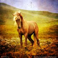 horse_in_flowers_by_katmary-d5sywsu