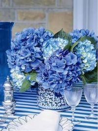 Shades of Blue on  Slice of Life
