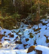 Little mountain stream beginning to thaw.  Spring is here :-)