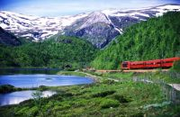 Oslo - Bergen Railway