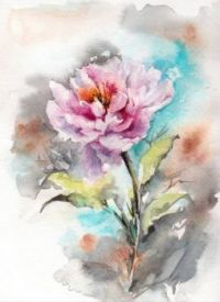 Pink Peony Watercolor painting