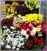 At the Florist...
