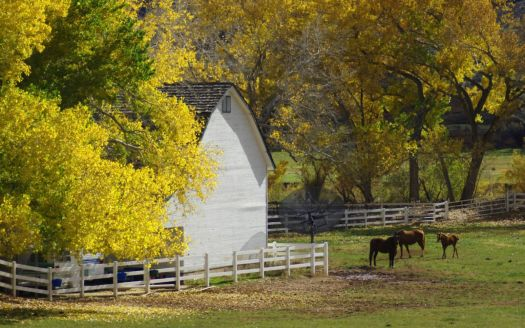 Autumn Country Farm