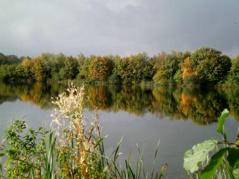 Poole Keynes - Lake Reflection