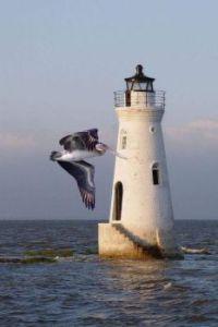 Lighthouse 209