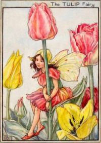 The Tulip Fairy (mini)